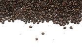 Kaffebönor och vit bakgrund — Stockfoto
