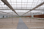 Agricultural greenhouse — Stock Photo