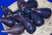 Fruits d'Italie commune fioroni type fig citrulara — Photo