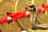 Feng shui year of the snake — Stock Photo