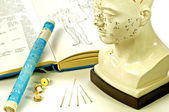 Acupuncture needles, head model, textbook and moxa roll — Stock Photo