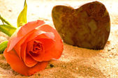 Rose on a beach with heart — Stock Photo