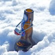 Beer bottle in snow — Stock Photo