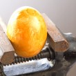 Egg in a bench vise — Stock Photo
