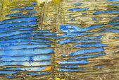 老烂木板用蓝颜色 — 图库照片
