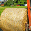 Straw bale — Stock Photo #30018837