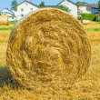 Stock Photo: Straw bale