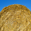 Straw bale — Stock Photo #30018977