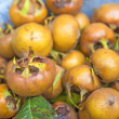 Stock Photo: Medlar, old fruit