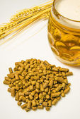 Hops pellets with beer glass — Stock Photo