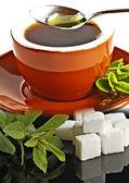 Stevia rebaudiana, support for sugar,tablets — Photo