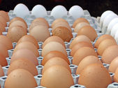 Eggs at a street sale — Stock Photo