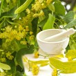 Lime-tree blossoms with mortar and tree — Stock Photo
