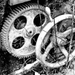 Rusty gear-wheel — Stock Photo