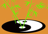Taoism symbol with growing bamboo — Stock Photo