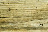 Old rotten plank — Stock Photo