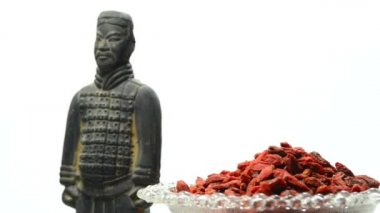 Gojii berries with antique chinese clay soldier — Vídeo de stock