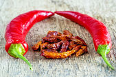 Chili fruits, fresh and dried — Stockfoto