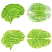 Yeşil düşün, 3d beyin ayarla — Stok fotoğraf