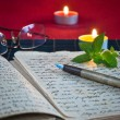 An open old book by the candlelight — Stok fotoğraf