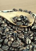 Koffie bonen met houten lepel close-up — Stockfoto