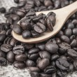 Coffee beans — Stock Photo #13275616
