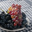 Stock Photo: Cabernet grape