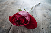 Red rose on old wooden background, — Stock Photo