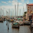 Stock Photo: Row of white yachts in the port, Belize City