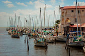 Row of white yachts in the port, Belize City — Stock Photo