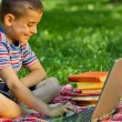 Smiling young boy working on laptop in the park — Stock Photo