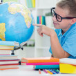 Постер, плакат: Boy studying geography