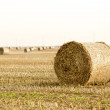 Focus on hay bale in the foreground in rural field — Stock Photo
