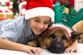 Two best friends boy and dog in Christmas night celebrating — Stock Photo