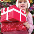 Little girl smiling with present near the Christmas tree — Stock Photo #35851103