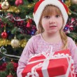 Little girl smiling with present near the Christmas tree — Stock Photo #36357709