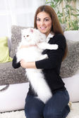 Beautiful young woman holding a Persian cat — Стоковое фото