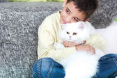 My lovely cat — Stockfoto