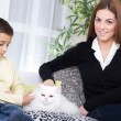 Mother and son sitting on couch and caressing white Persia — Stock Photo #39002451