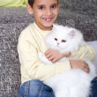 Boy hugging a white Persian cat — Stock Photo #39002815