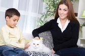 Mother and son sitting on the couch and caressing a white Persia — Stock Photo