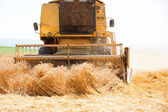 An yellow old harvester in work — Stock Photo
