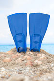 flipper on a sandy beach — Stock Photo