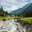 The mountain river in Genova valley — Stock Photo