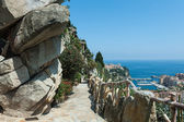 View of Monte Carlo and the Mediterranean Sea — Stock Photo