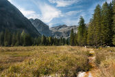 Bergsutsikt adamello-presanella grupp alperna, genova dalen — Stockfoto