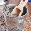 Pail of dry lavender — Stock Photo
