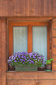 Alpine window — Stock Photo