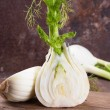 Fennel — Stock Photo #23072366