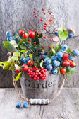Autumn garden berries on the old wooden background — Stock Photo